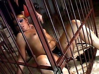 Shemale fetish cage spanked and submitted