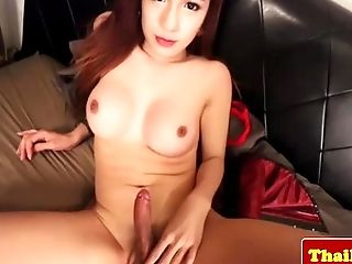 Busty ladyboy in corset pleasures self